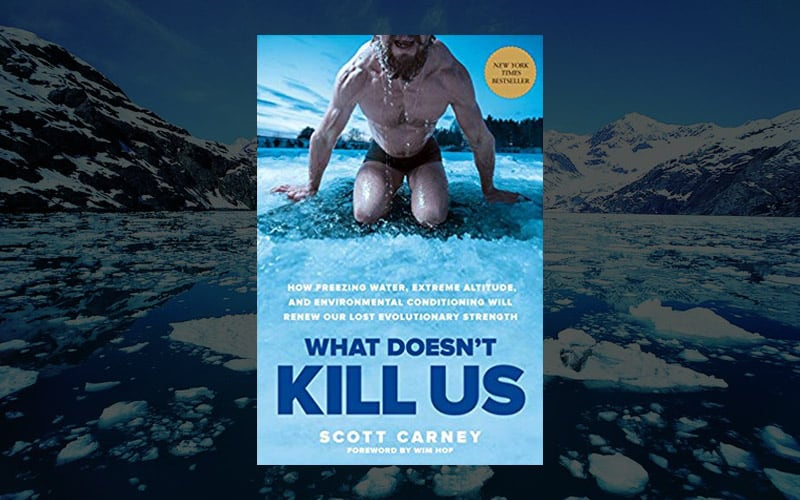 What Doesn't Kill Us: How To Renew Our Lost Evolutionary Strength