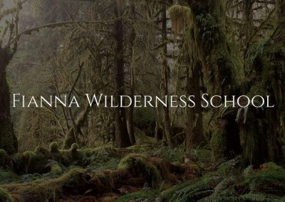 Fianna Wilderness School – Nature Education for the Land and Soul