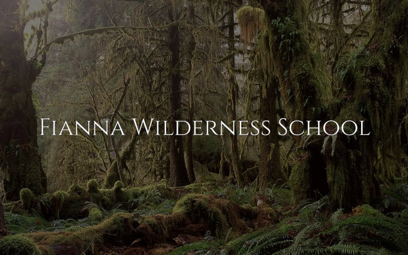 Fianna Wilderness School – Nature Education for the Land and Soul | Wild By Nature